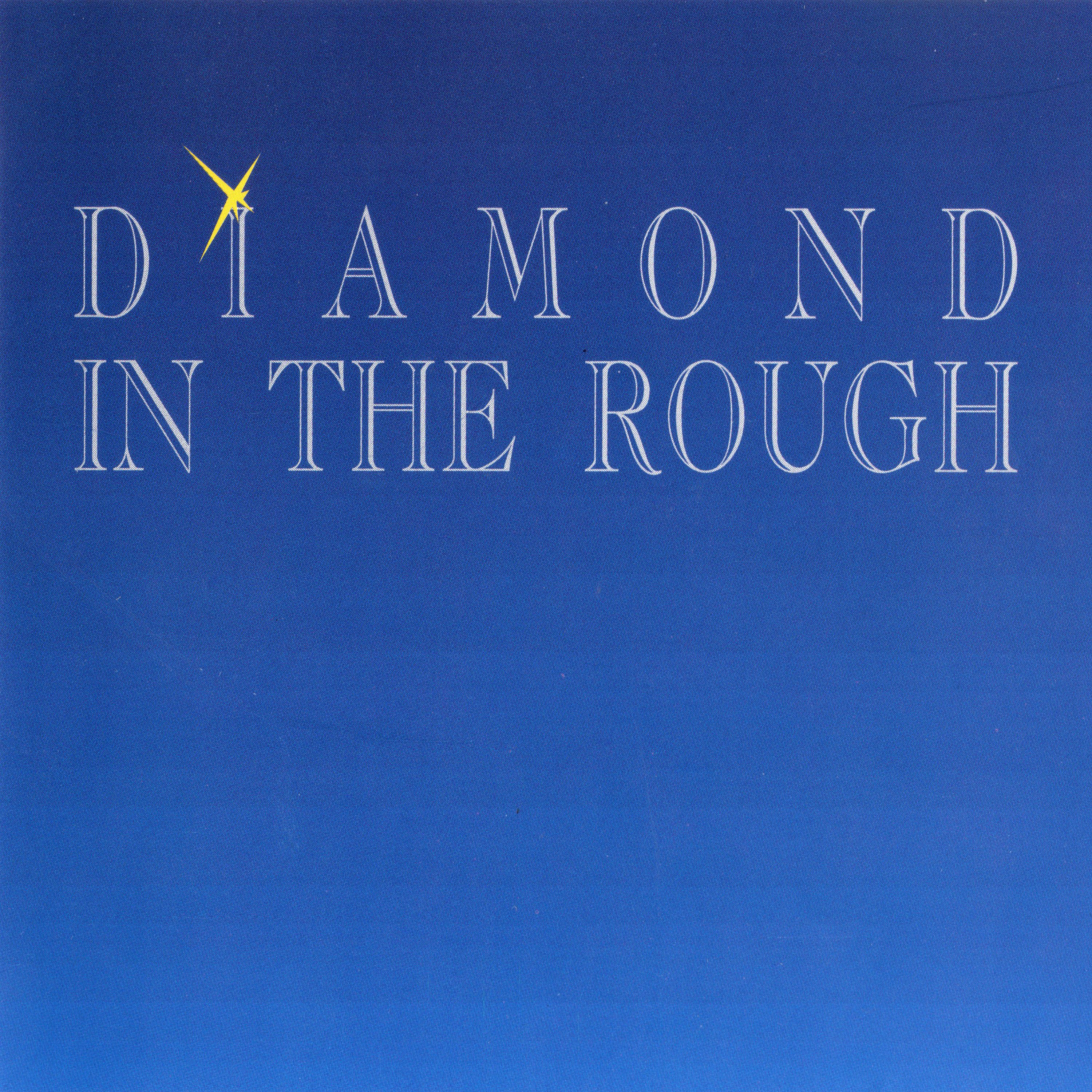 DIAMOND IN THE ROUGH - Diamond In The Rough +2