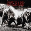 GOTTHARD - 13 +2 bonus tracks (ltd. edition digi pack)